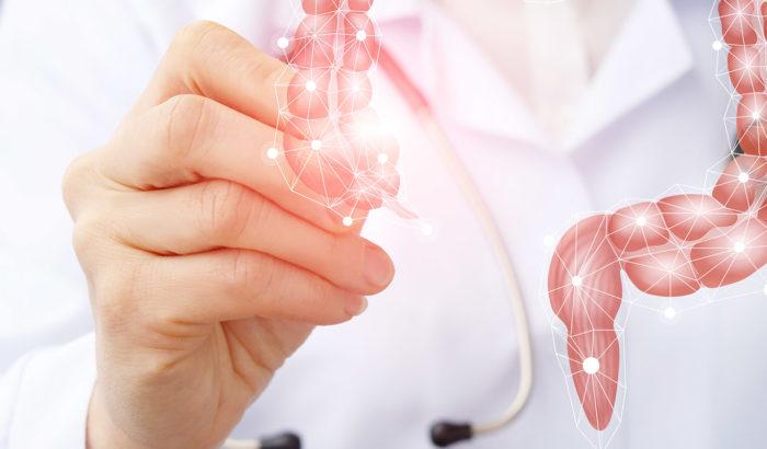 Gut Screening, l'esame più completo della flora intestinale